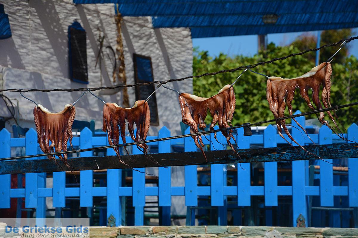foto Ano Meria Folegandros - Eiland Folegandros - Cycladen - Foto 222