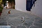 Chora Folegandros - Eiland Folegandros - Cycladen - Foto 14 - Foto van De Griekse Gids