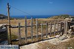 Eiland Folegandros - Cycladen - Foto 114 - Foto van De Griekse Gids
