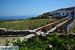 Ano Meria Folegandros - Eiland Folegandros - Cycladen - Foto 203 - Foto van De Griekse Gids