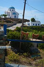 Ano Meria Folegandros - Eiland Folegandros - Cycladen - Foto 208 - Foto van De Griekse Gids
