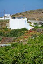 Ano Meria Folegandros - Eiland Folegandros - Cycladen - Foto 229 - Foto van De Griekse Gids