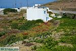 Ano Meria Folegandros - Eiland Folegandros - Cycladen - Foto 230 - Foto van De Griekse Gids