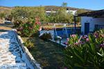 Livadi Folegandros - Eiland Folegandros - Cycladen - Foto 272 - Foto van De Griekse Gids