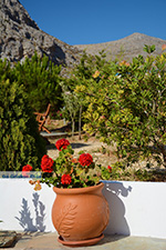 Hotel Aegean Star Karavostasis Folegandros - Cycladen - Foto 299 - Foto van De Griekse Gids