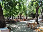 Lafkos Pilion - Griekenland - De Griekse Gids 002 - Foto van De Griekse Gids