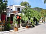 Platania Pilion - Griekenland - De Griekse Gids 014 - Foto van De Griekse Gids