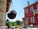 GriechenlandWeb.de Bloemenpracht hotel Porfyron Ano Pedina - Zagori Epirus - Foto GriechenlandWeb.de