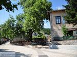Centrale plein Monodendri - Zagori Epirus - Foto van De Griekse Gids