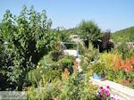 GriechenlandWeb.de Bloementuin Hotel Porfyron Ano Pedina - Zagori Epirus - Foto GriechenlandWeb.de