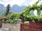 Traditioneel dorp Papingo foto 3 - Zagori Epirus - Foto van De Griekse Gids