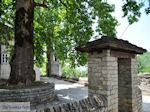 Traditioneel dorp Papingo foto 11 - Zagori Epirus - Foto van De Griekse Gids