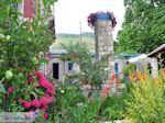 GriechenlandWeb.de Tuin Hotel Porfyron foto 2 in Ano Pedina - Zagori Epirus - Foto GriechenlandWeb.de