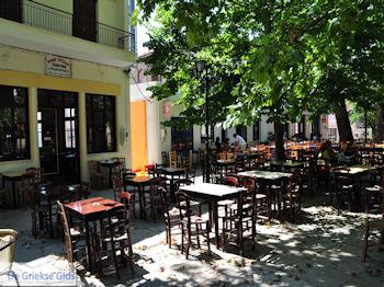 Lafkos Pilion - Griekenland - De Griekse Gids 003 - Foto van De Griekse Gids