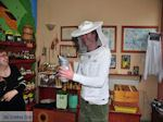 Imker honingwinkel Arnaia (Arnea) | Athos gebied Chalkidiki | Griekenland - Foto van De Griekse Gids
