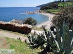 Mylopotamos | De Heilige Berg Athos foto 3 | Athos gebied Chalkidiki | Griekenland - Foto van De Griekse Gids