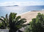 GriechenlandWeb.de Mooie stranden nabij Eagles Palace Ouranoupolis foto 8 | Athos gebied Chalkidiki | Griechenland - Foto GriechenlandWeb.de