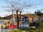 Eilandje Kapros bij Olympiada | Athos gebied Chalkidiki | Griekenland - Foto van De Griekse Gids