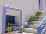 GriechenlandWeb.de Kea (Tzia) - Griekse eilanden - GriechenlandWeb.de foto 5 - Foto Nellie van Wageningen