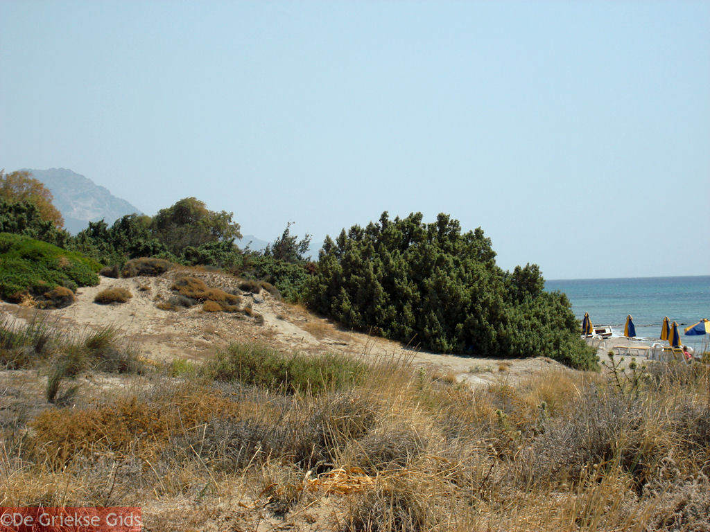 foto Kardamena Kos - Griekse Gids foto 5