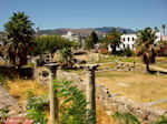 GriechenlandWeb.de Kos Stadt - Griekse Gids foto 4 - Foto GriechenlandWeb.de