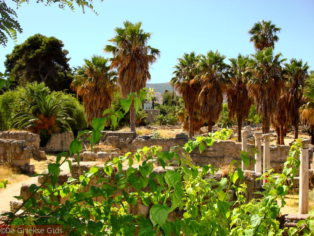 foto Kos stad - Griekse Gids foto 5