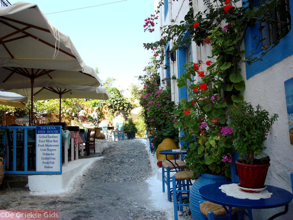 foto Kos stad - Griekse Gids foto 52
