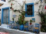 Kos stad - Griekse Gids foto 53 - Foto van De Griekse Gids