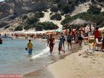 Paradise Beach Kos - Griekse Gids foto 6 - Foto van De Griekse Gids