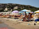 Paradise Beach Kos - Griekse Gids foto 19 - Foto van De Griekse Gids