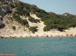 Paradise Beach Kos - Griekse Gids foto 21 - Foto van De Griekse Gids