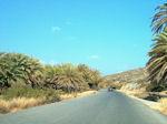 Vai Kreta - Foto 1 - Foto van De Griekse Gids