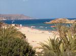 GriechenlandWeb Vai Kreta - Foto 4 - Foto GriechenlandWeb.de