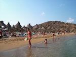 GriechenlandWeb Vai Kreta - Foto 7 - Foto GriechenlandWeb.de