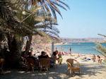 Vai Kreta - Foto 15 - Foto van De Griekse Gids