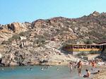 GriechenlandWeb.de Vai Kreta - Foto 16 - Foto GriechenlandWeb.de