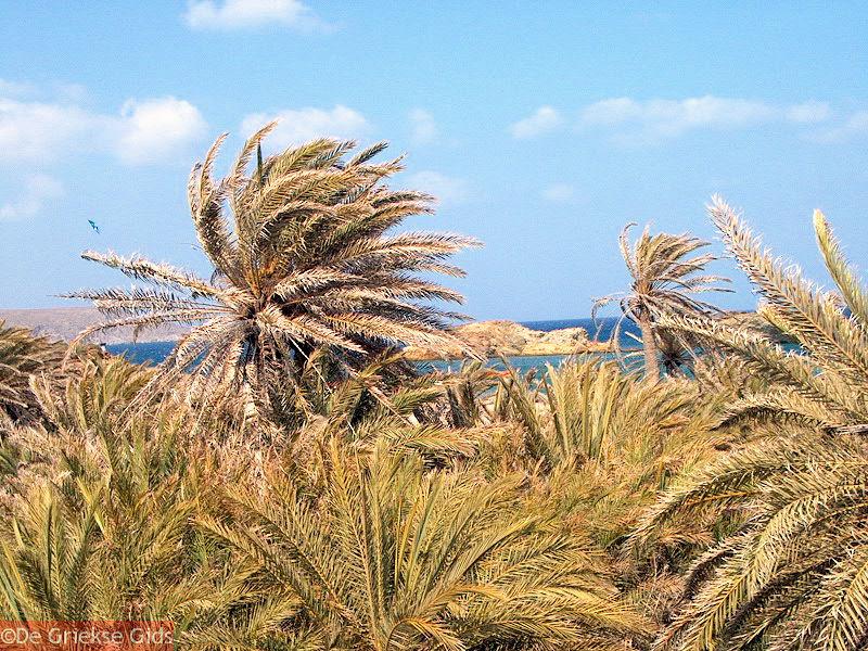 foto Vai Kreta - Foto 2
