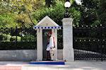 GriechenlandWeb.de Tsolias (Evzon) het Presidentieel Paleis - Foto GriechenlandWeb.de