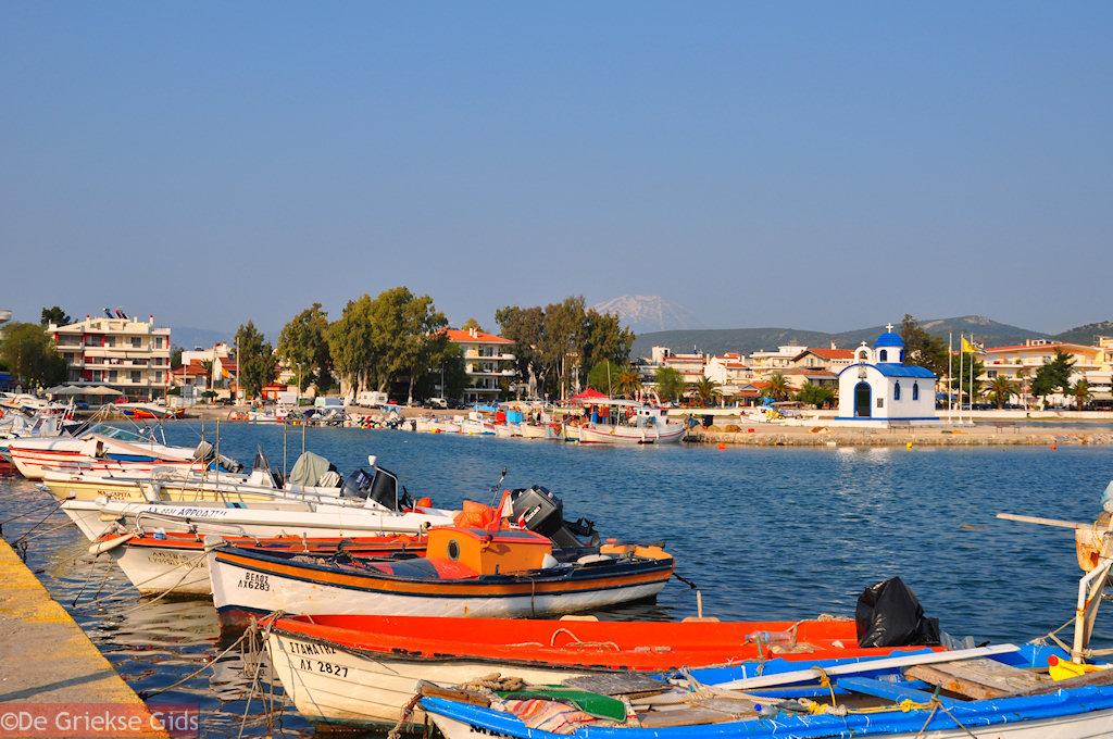 foto Vissersbootjes Nea Artaki   Evia Griekenland   De Griekse Gids