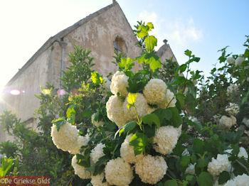 Klooster Arkadi Rethymnon - Foto van https://www.grieksegids.nl/fotos/grieksegidsinfo-fotos/albums/userpics/10001/normal_arkadi-klooster-5.jpg