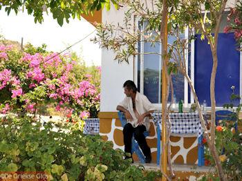 Biertje bij Taverna OI DIDIMOI nabij Kamiros - Foto van https://www.grieksegids.nl/fotos/grieksegidsinfo-fotos/albums/userpics/10001/normal_kamiros-rhodos-18.jpg