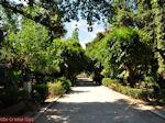 Het gemeentelijke park van Rethymnon - Foto van De Griekse Gids