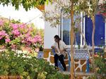 GriechenlandWeb.de Biertje Taverna OI DIDIMOI nabij Kamiros - Foto GriechenlandWeb.de