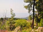 Bosrijk Noord Evia, nabij Aedipos en Orei - Foto van De Griekse Gids