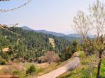 Groene omgeving Osios David bij Rovies | Evia Griekenland | De Griekse Gids - Foto van De Griekse Gids