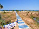 Naar het strand van Rethymnon - Foto van De Griekse Gids