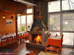 Taverna in Seta | Evia Griekenland | de Griekse Gids - Foto van De Griekse Gids