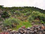 Tussen Perama en Axos - Foto van De Griekse Gids