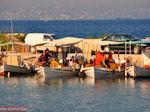 Vissersbootjes Eretria | Evia Griekenland | De Griekse Gids - Foto van De Griekse Gids