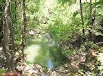 Water Vlindervallei Rhodos - Foto van De Griekse Gids
